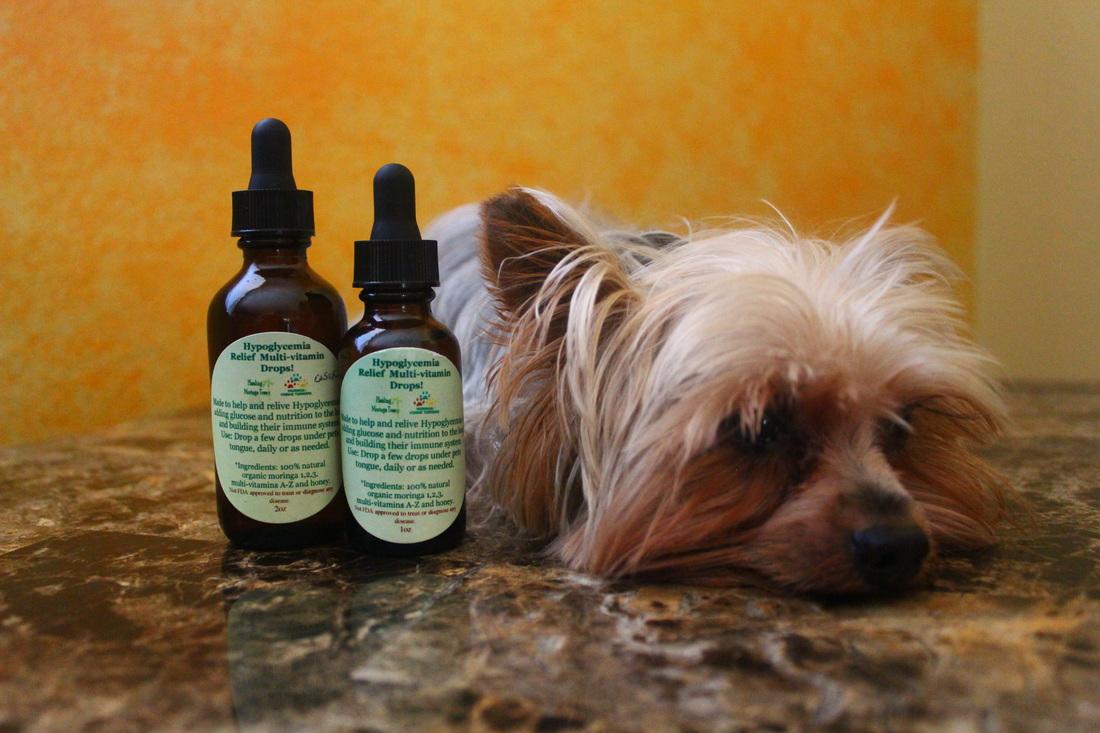 Natural Health Dog